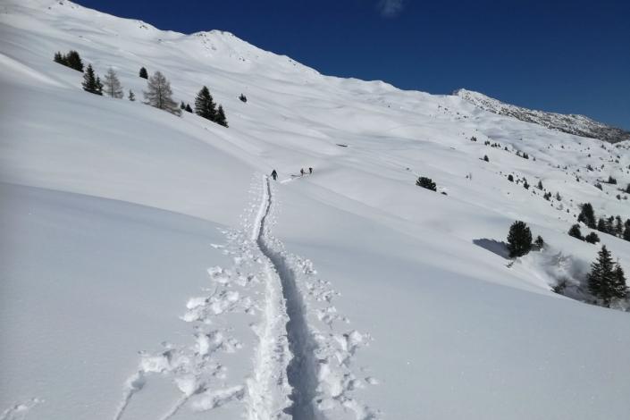 Tiefschnee Skifahren